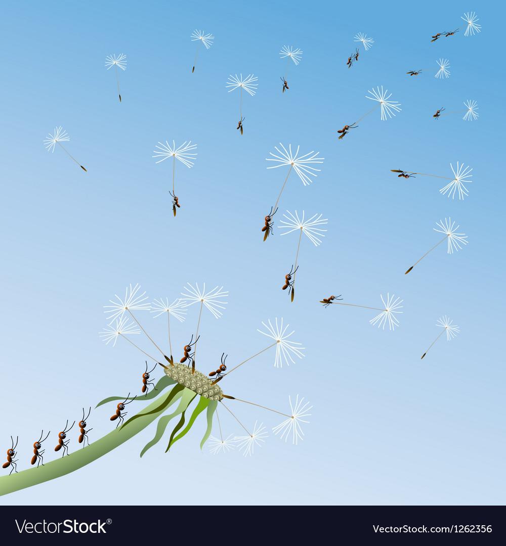 Dandelion on a background blue sky vector