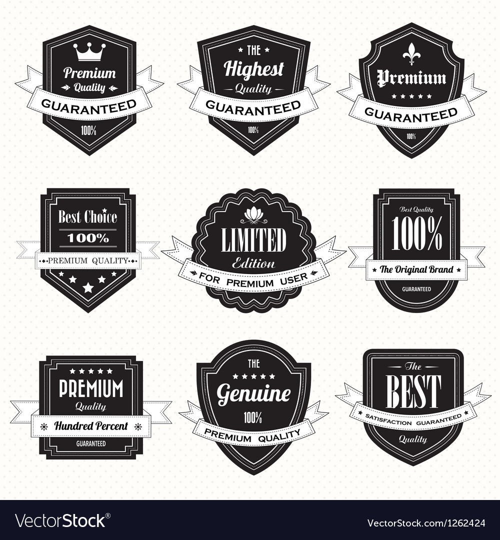 Set of retro vintage badges and labels eps10 vector