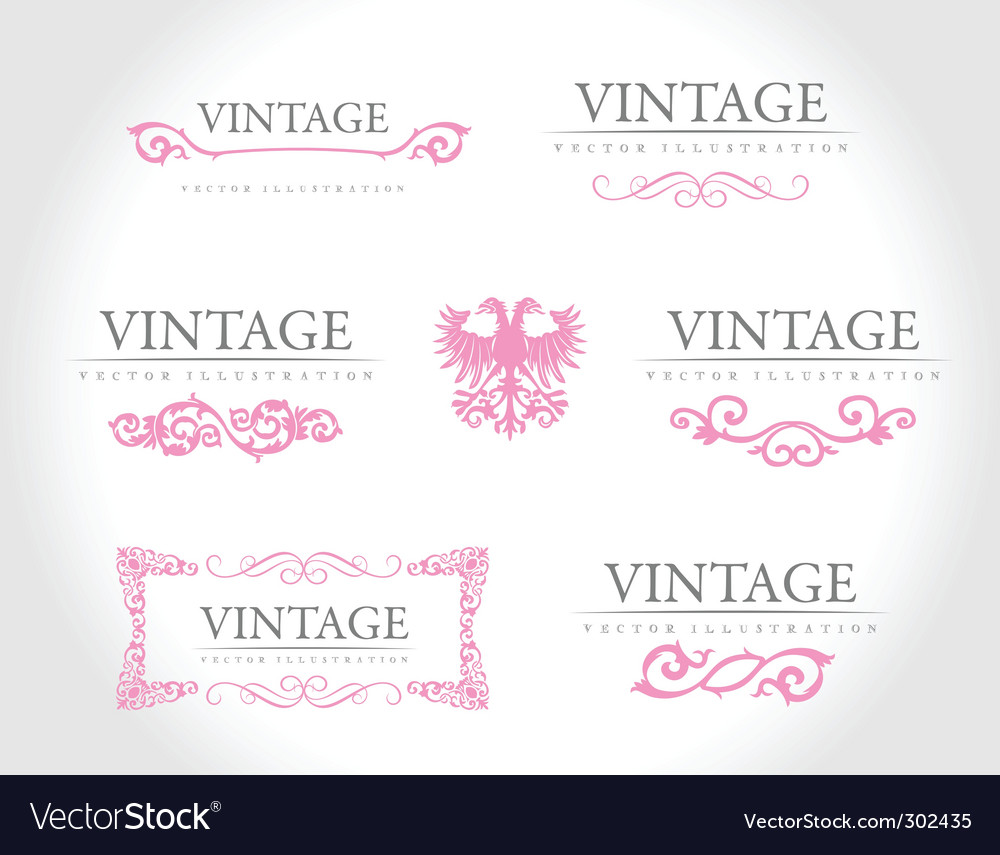 Baroque vintage royal design elements vector