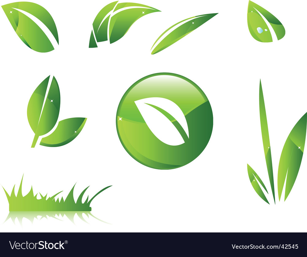 Leaves icons vector