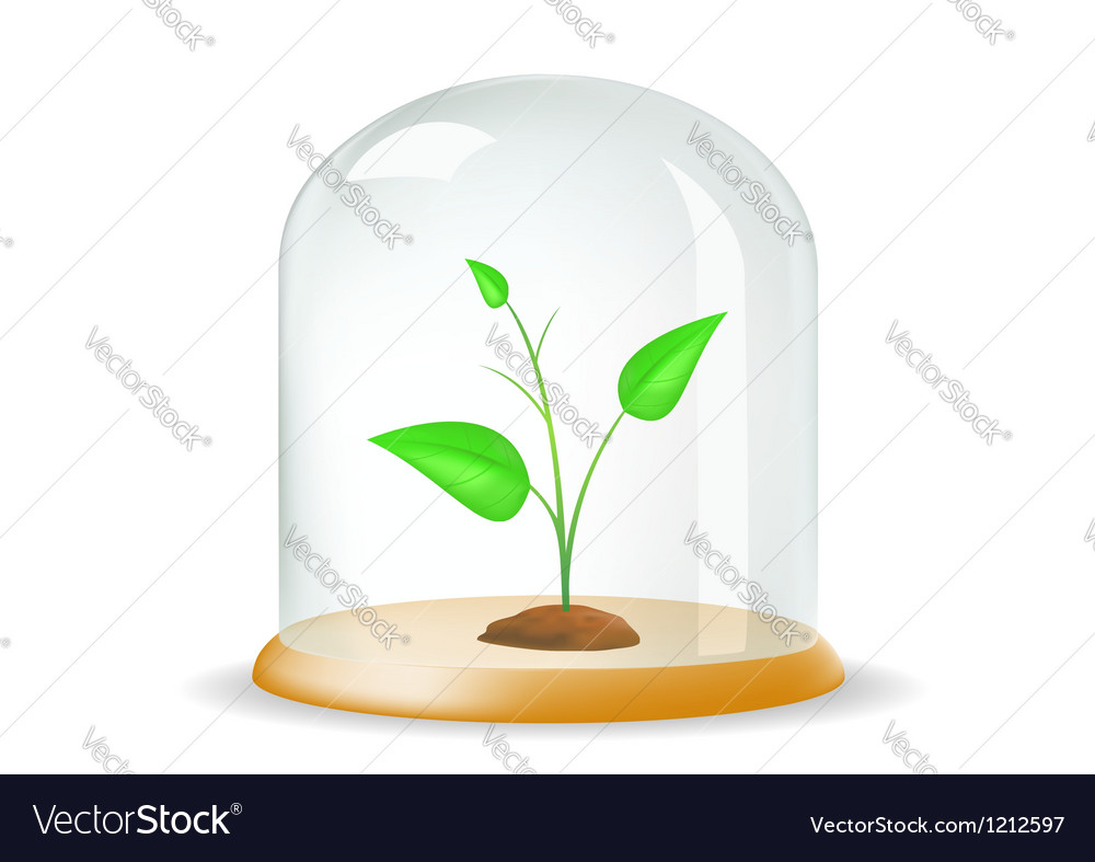 Plant under the hood vector