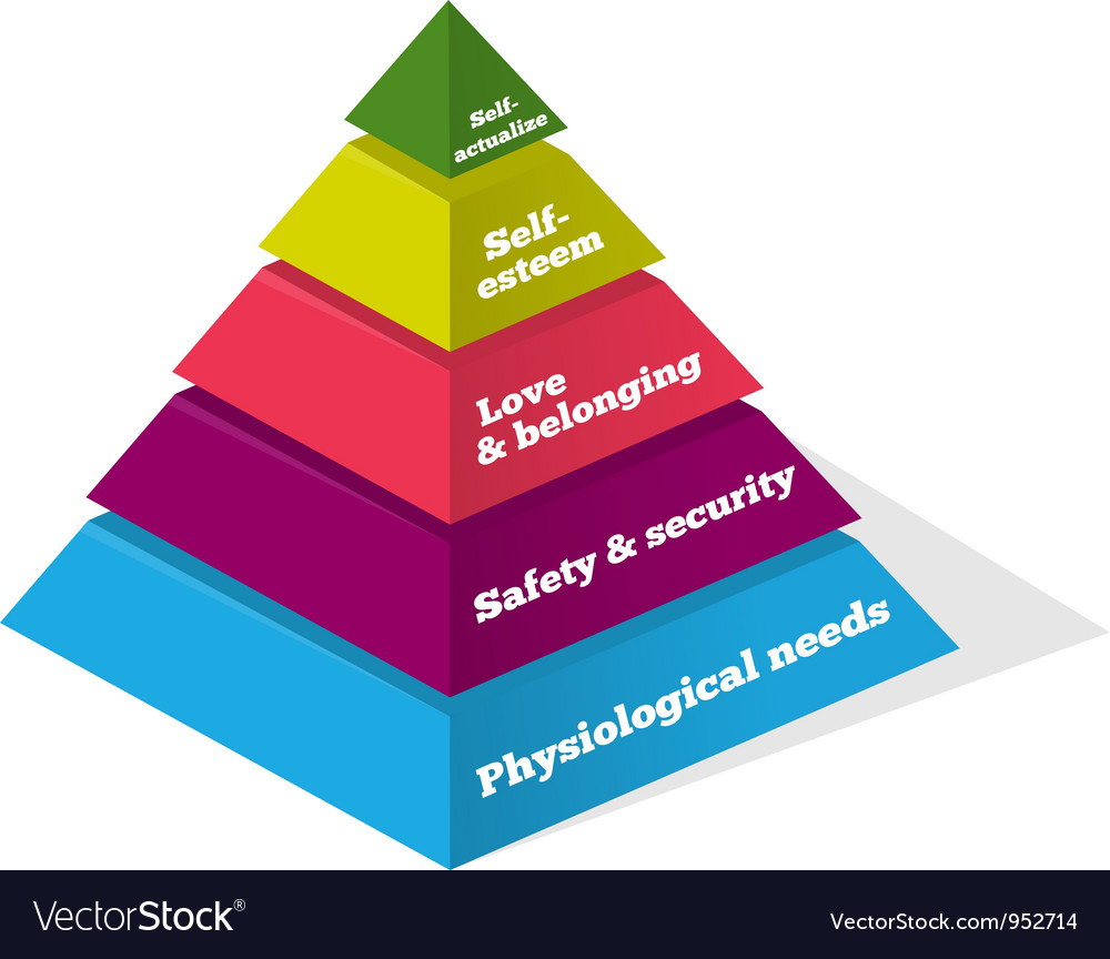 Maslow psychology chart vector