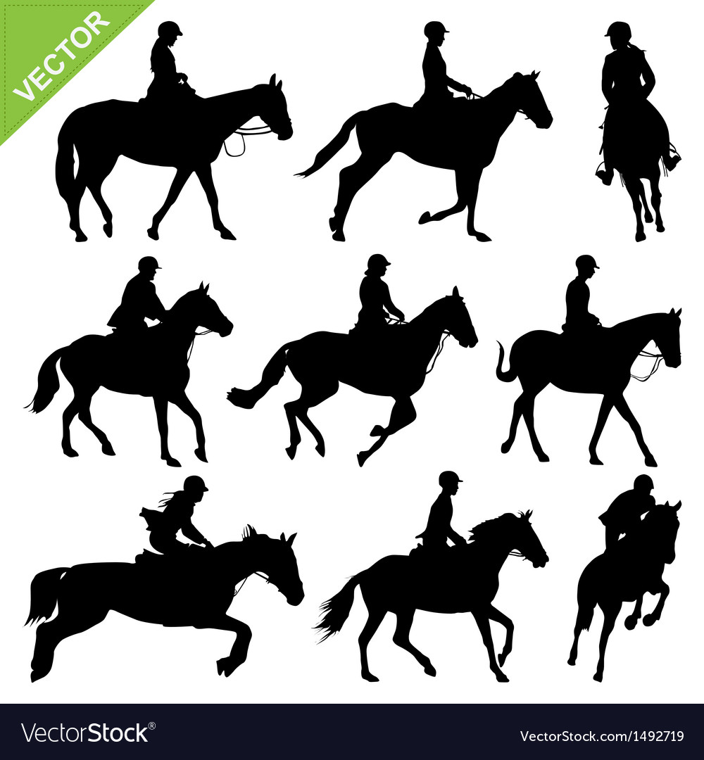 Horse riding silhouettes collections vector