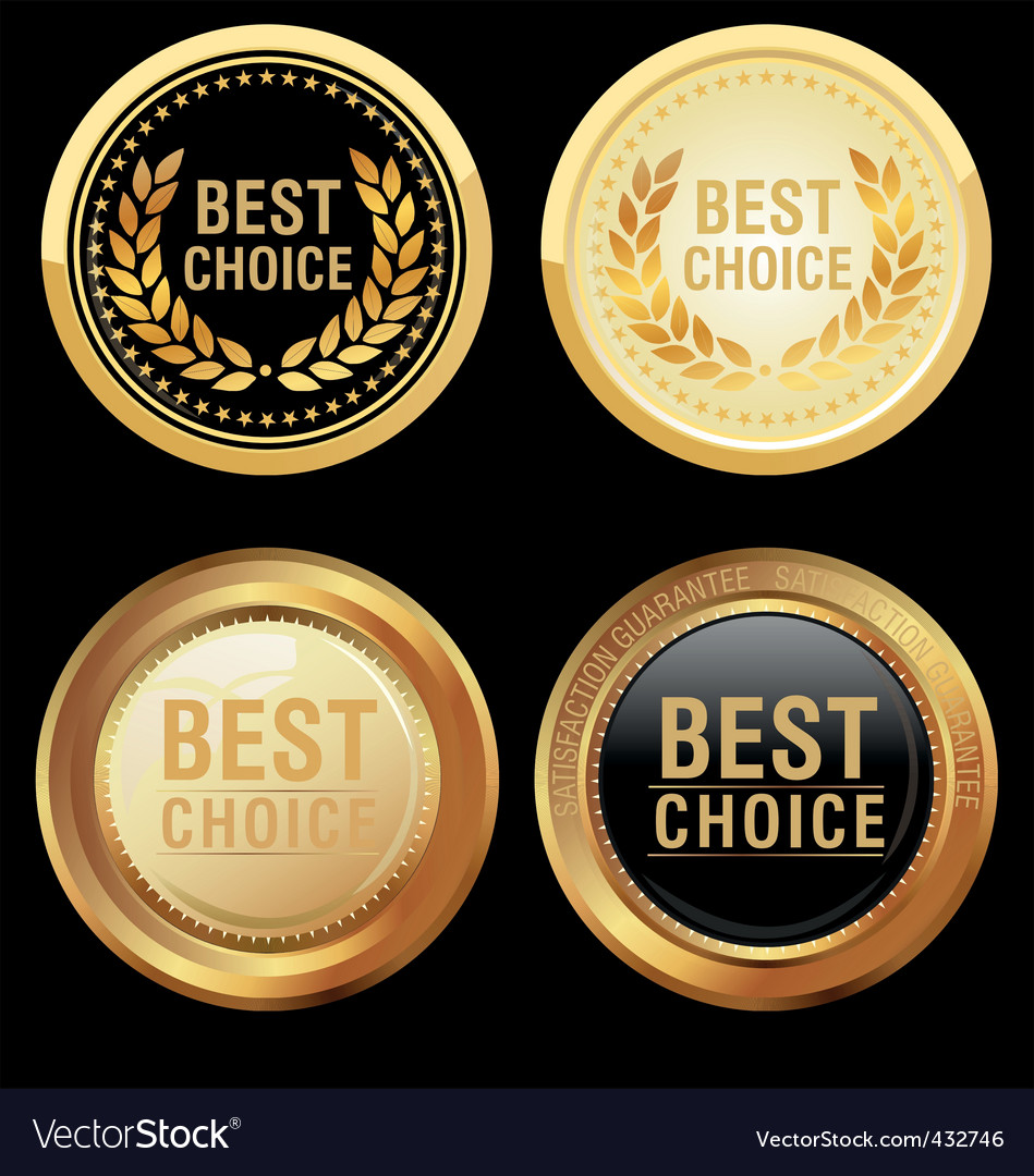 Best choice emblem vector