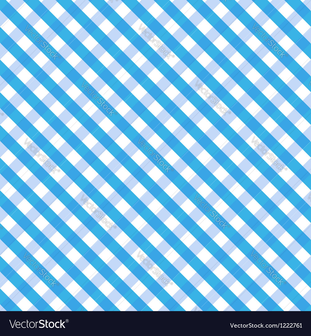 Blue gingham vector