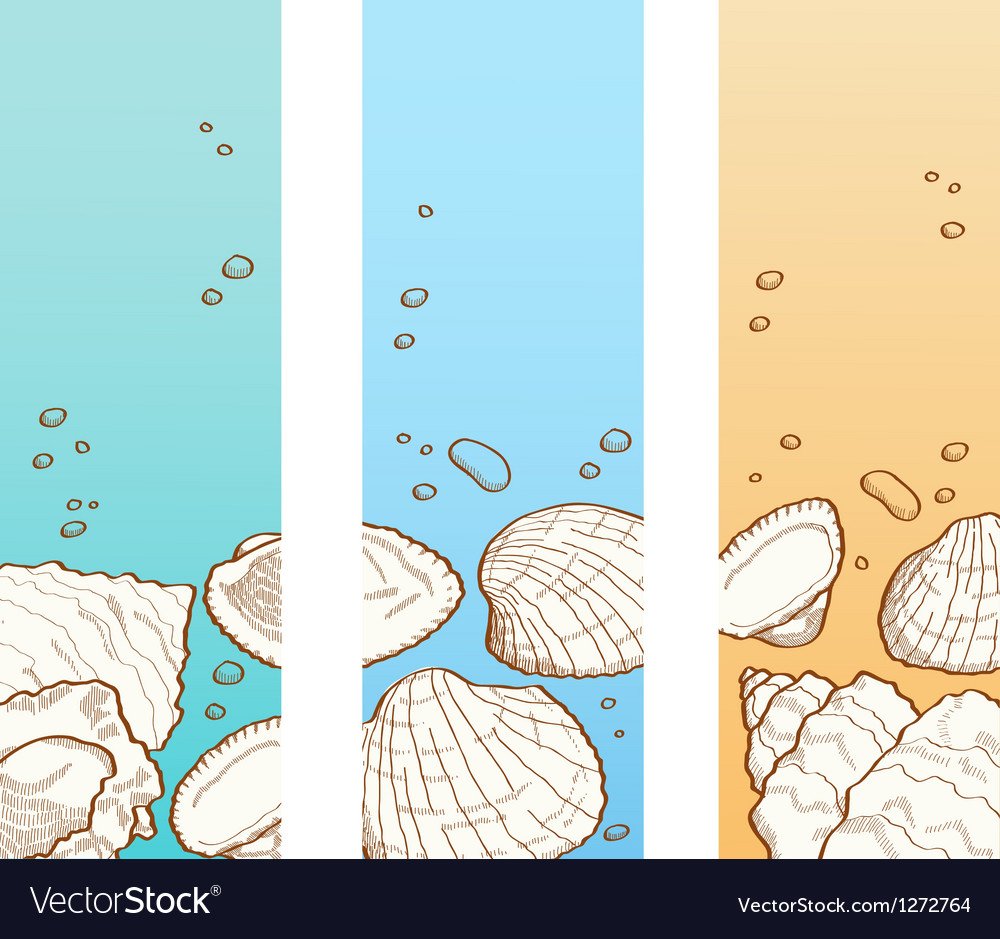 Seashell banner set vector