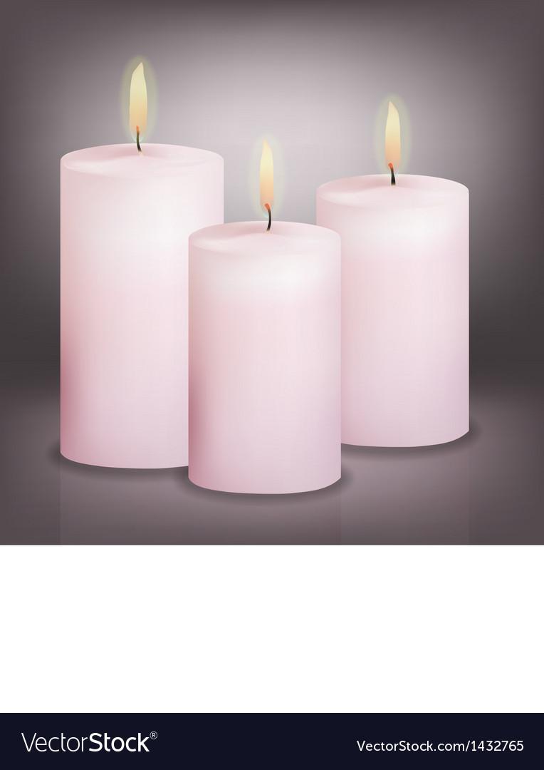 Three pink candles vector