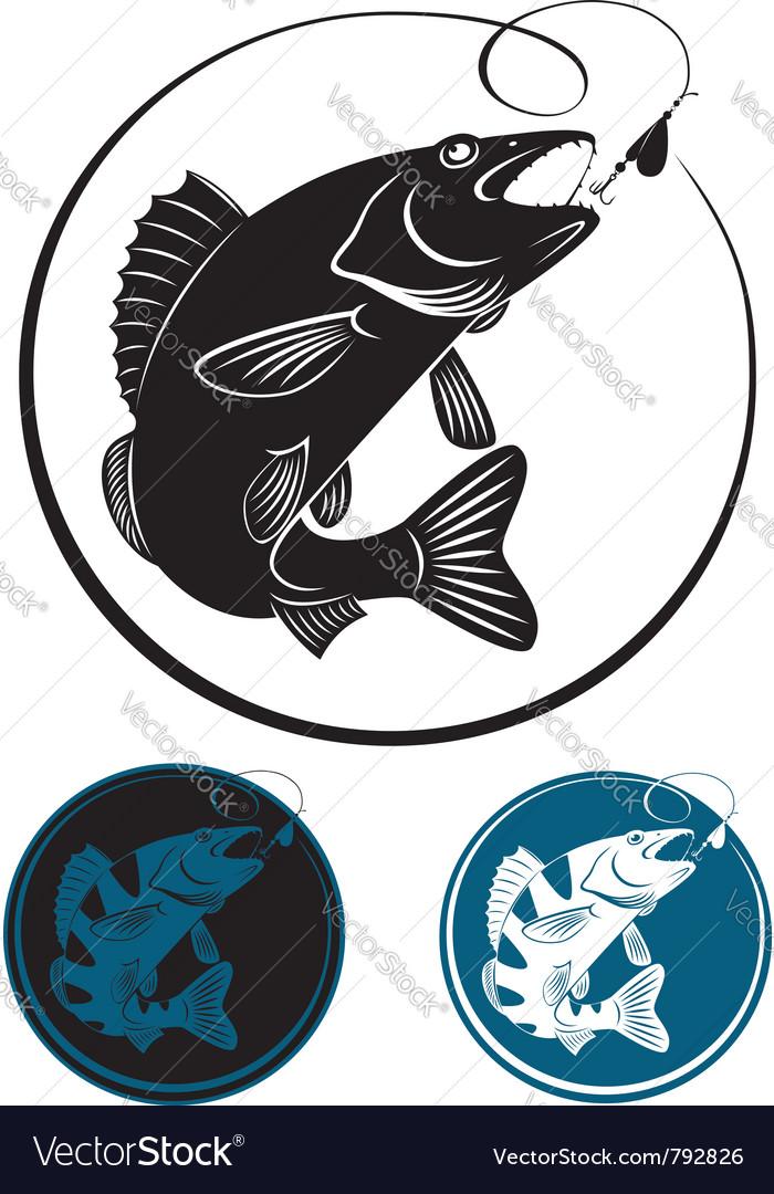 The fish walleye vector