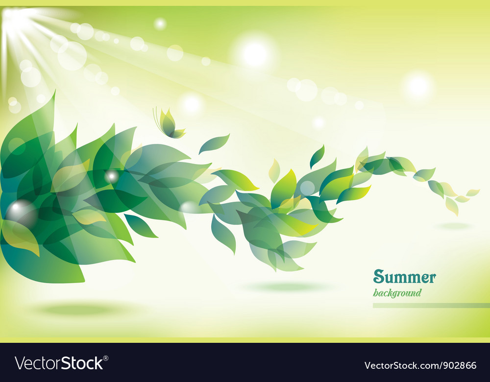 Abstract summer background with green leaves vector