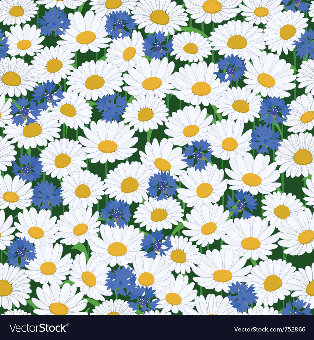 Seamless camomiles and cornflower pattern vector