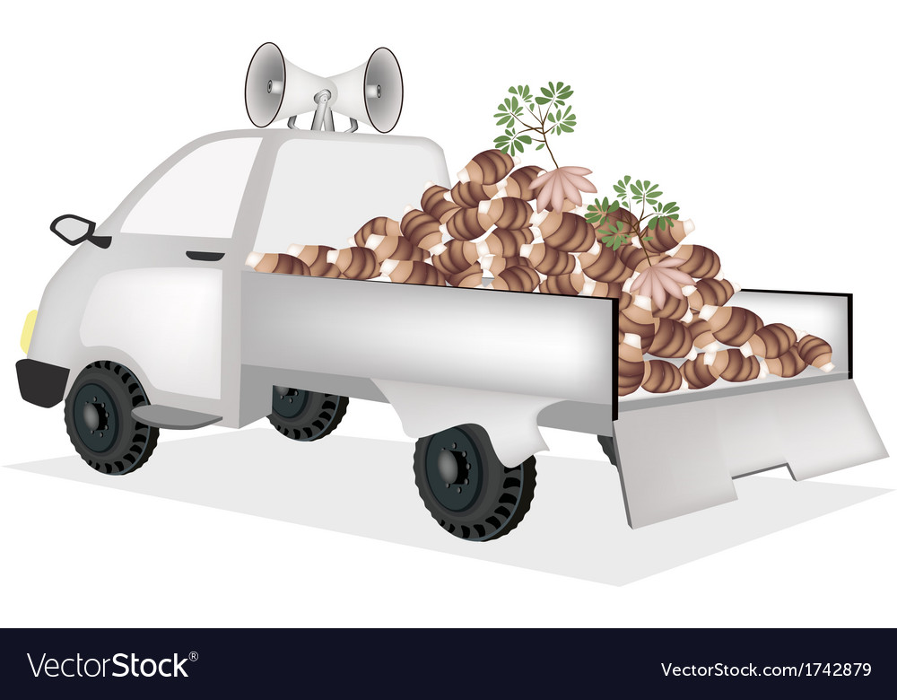 Fresh taroes on a pickup truck ready for sale vector