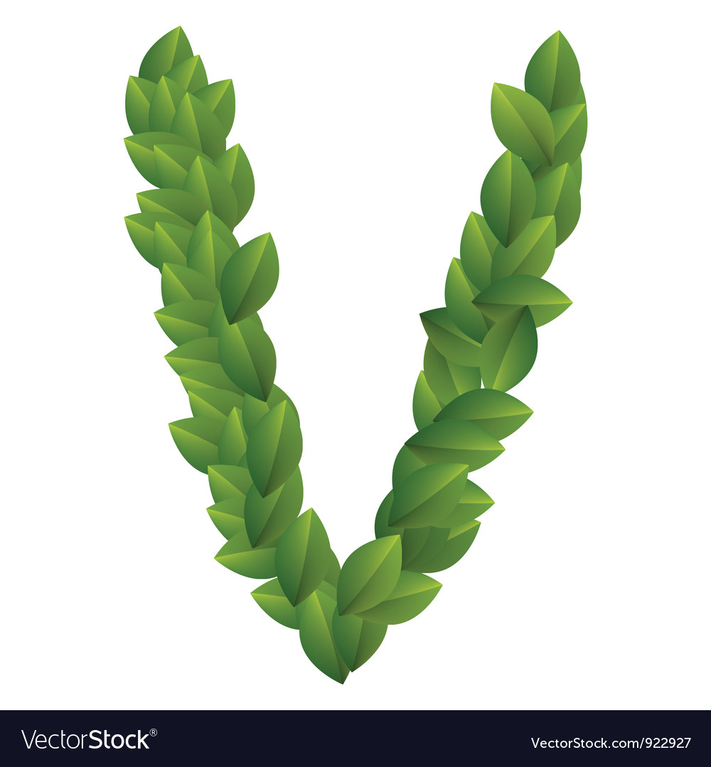 V Alphabet Letter Letter v of green leaves