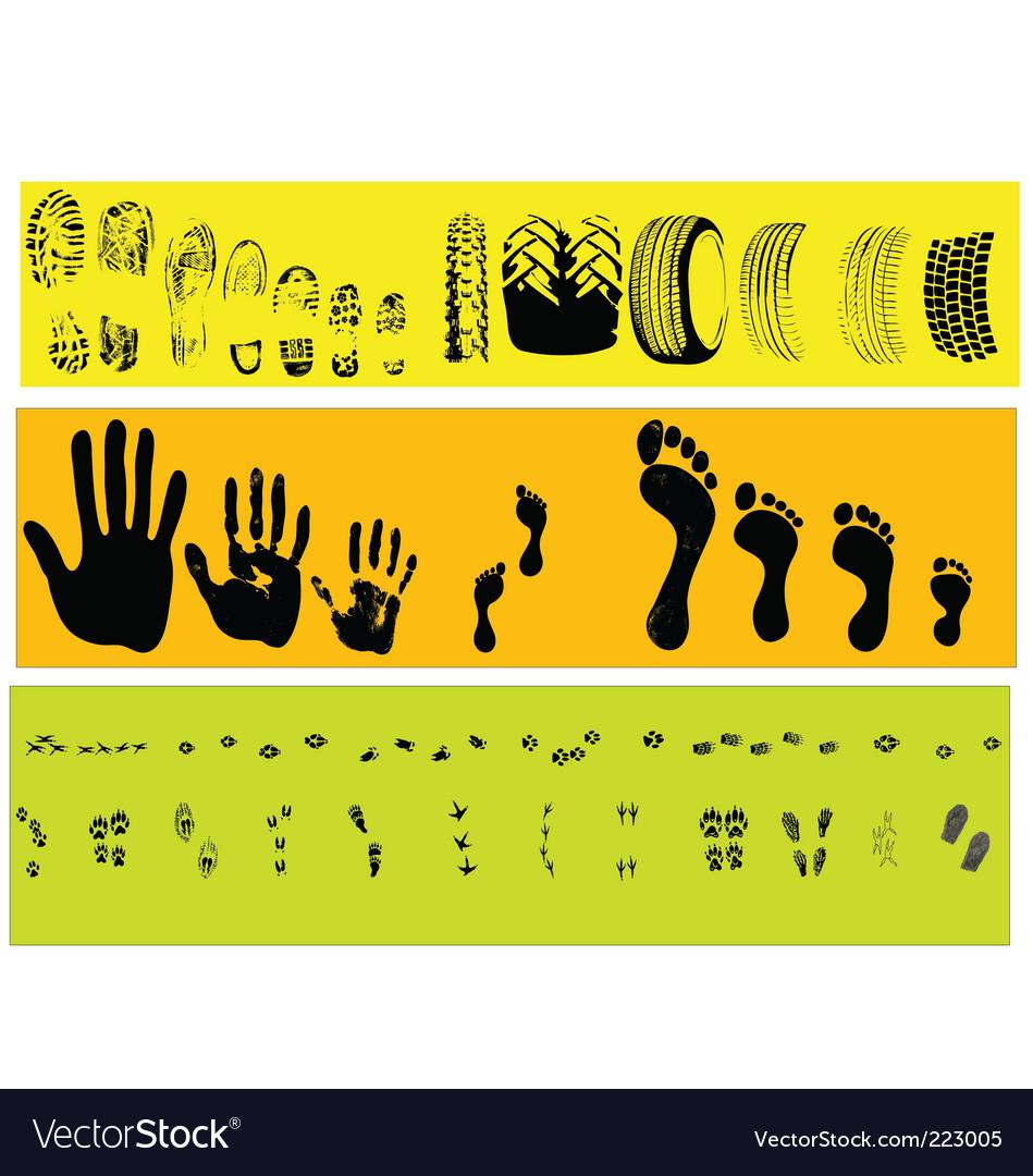 Animal and human tracks vector