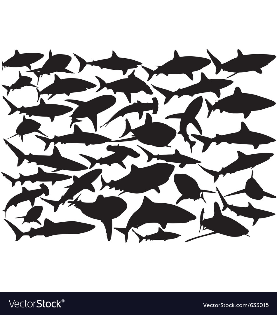 Shark silhouettes vector