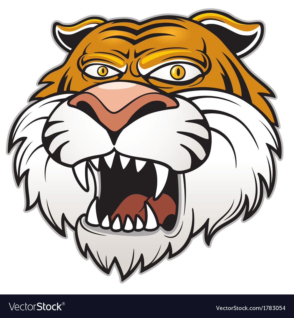 Head tiger vector