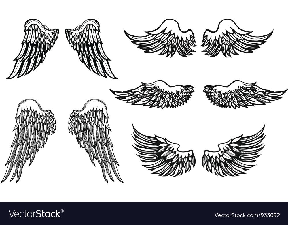 Wings vector
