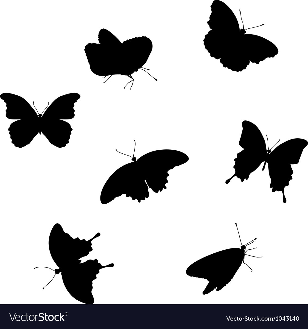 Set of butterflies vector