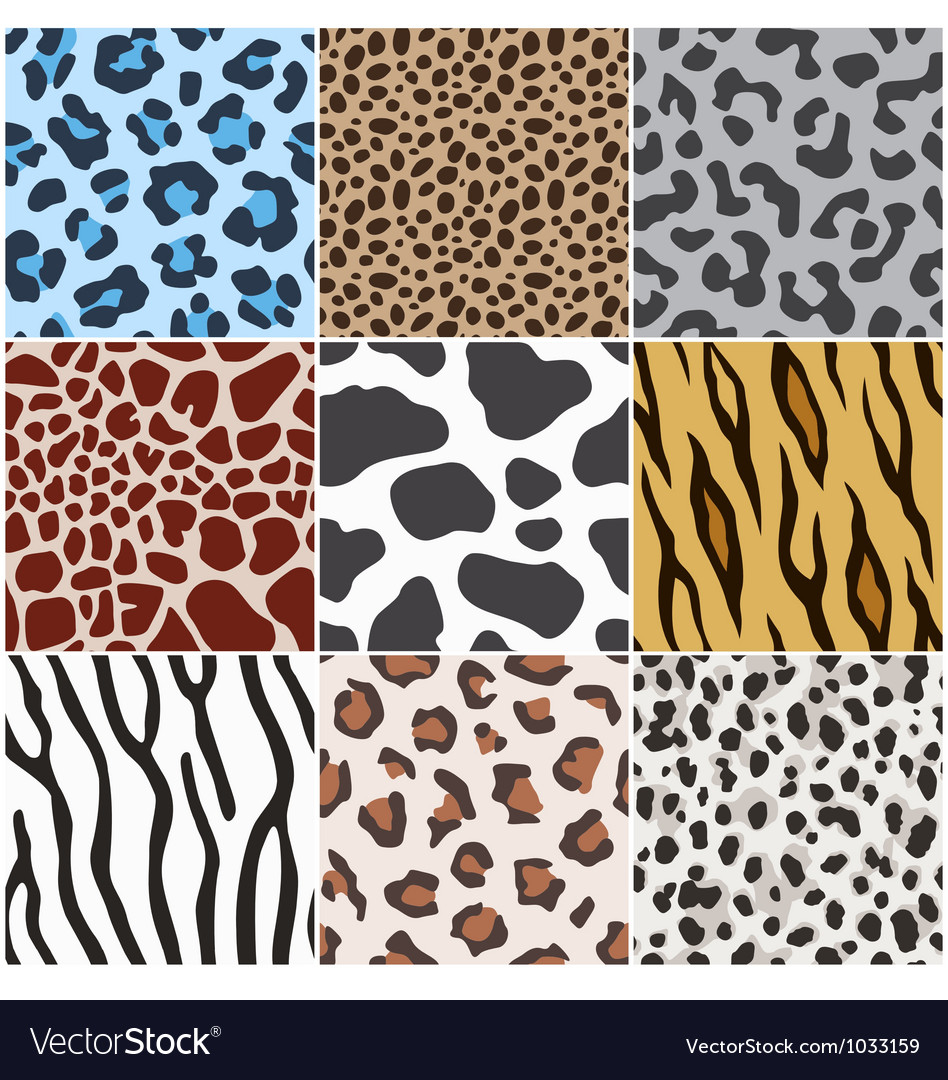 Leopard zebra cow tiger giraffe skin pattern vector