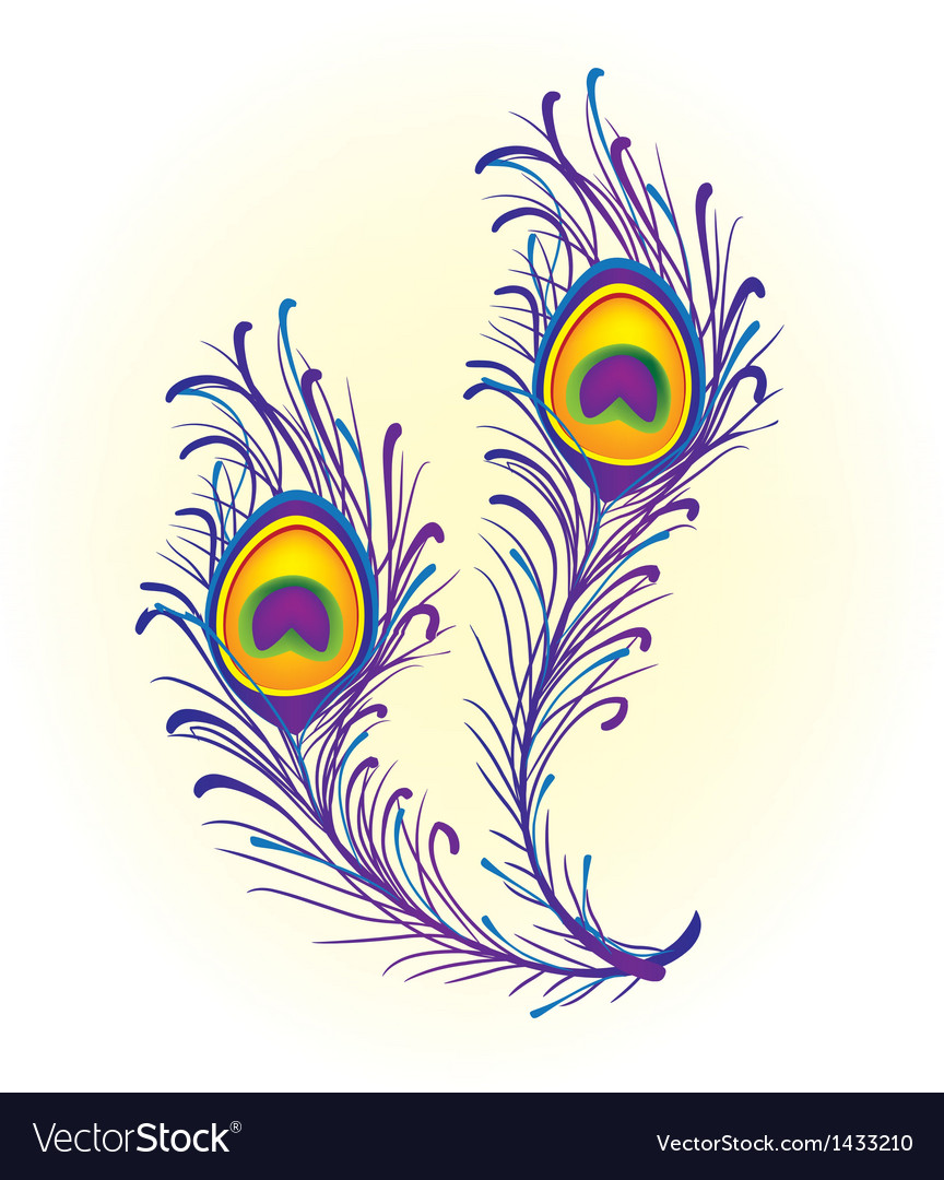Peacock Pattern Vector Peacock feather vector Peacock Pattern Outline