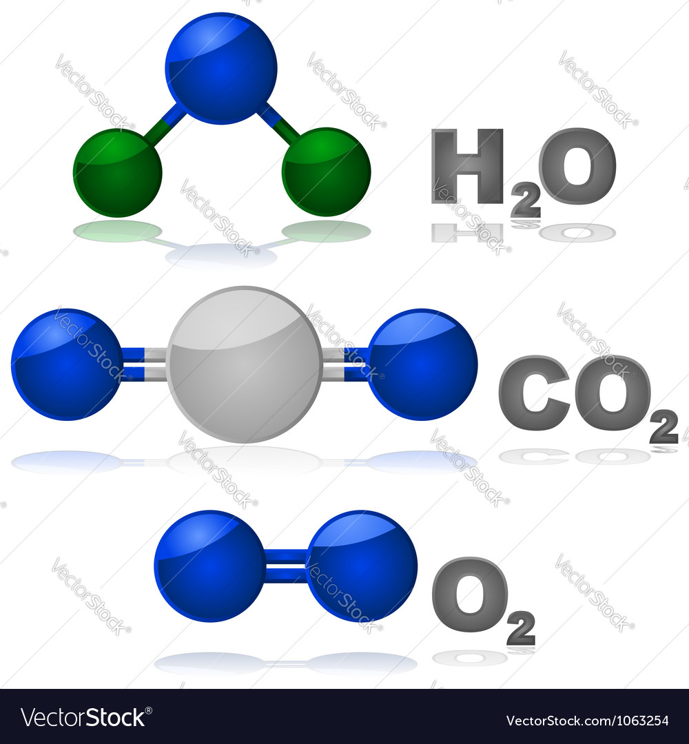 Molecules vector