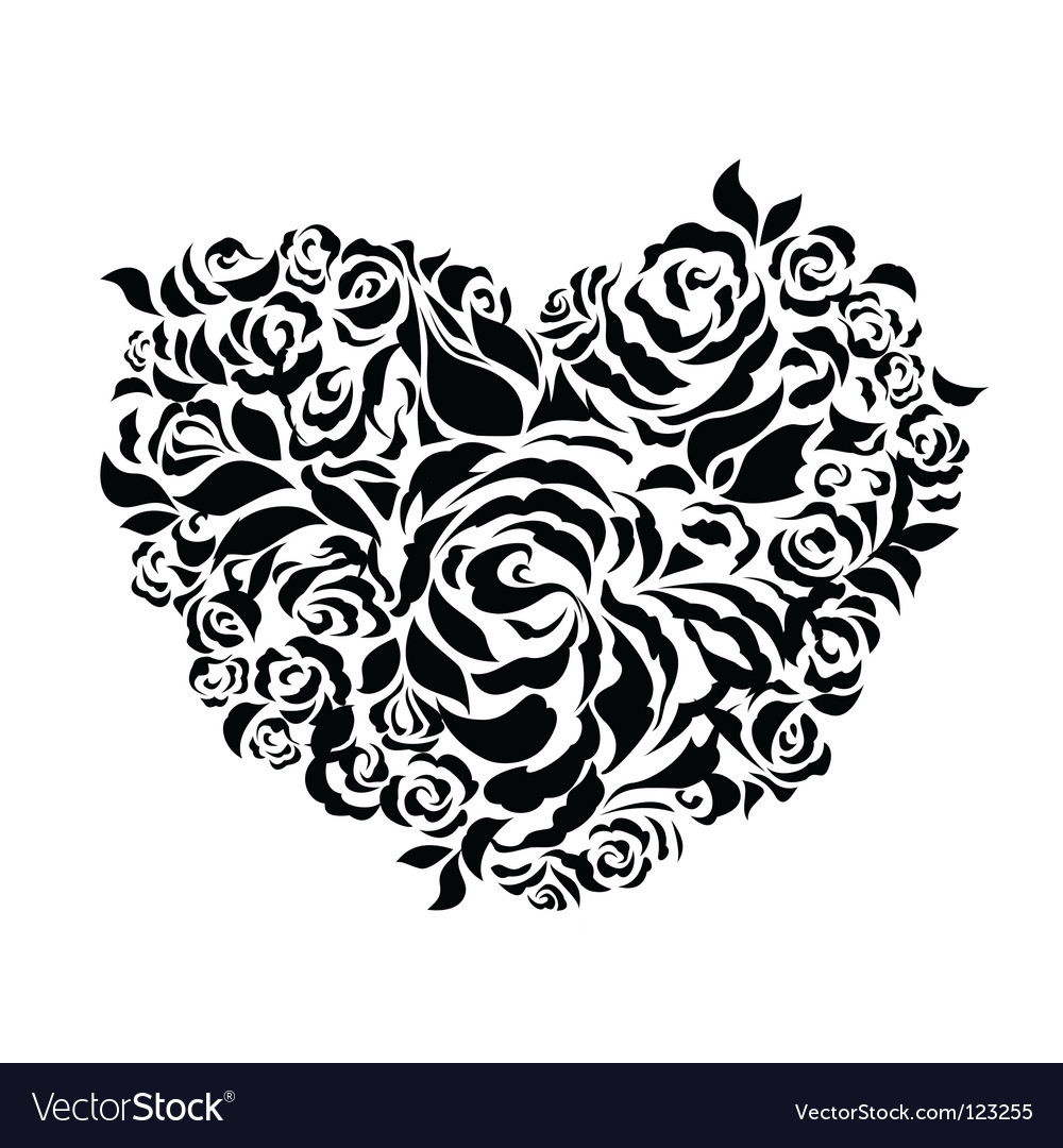 Roses and heart vector