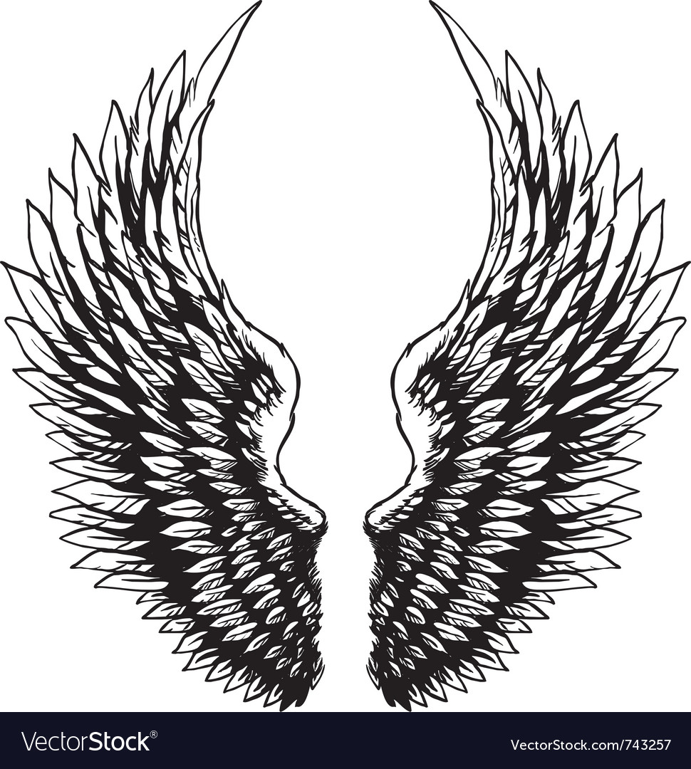 Hand drawn eagle wings vector