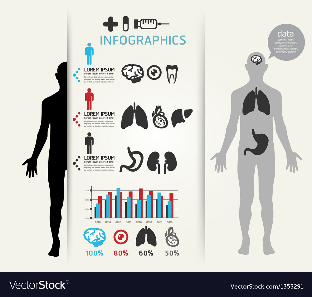 Infographic human body vector