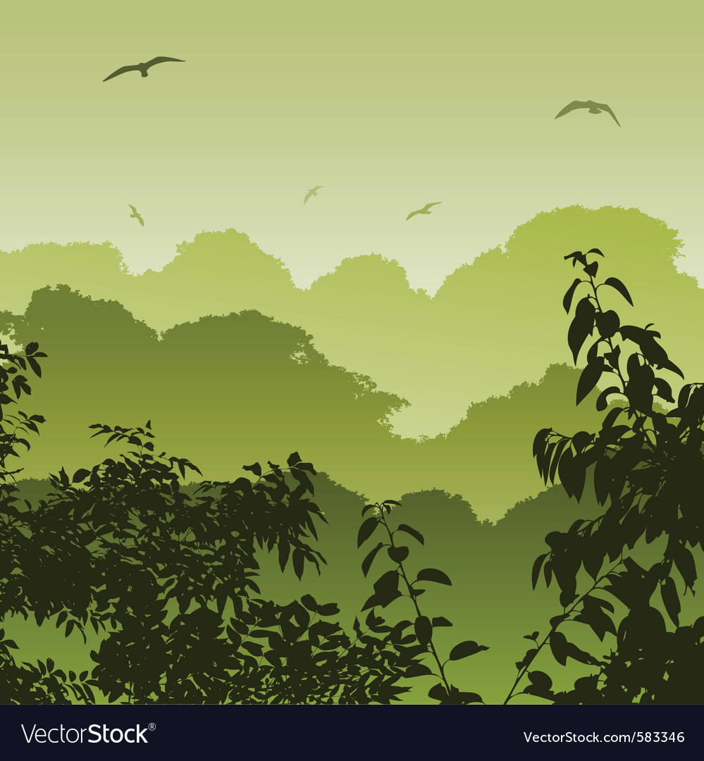 Landscape Sunrise Vector Art Download Forest Vectors