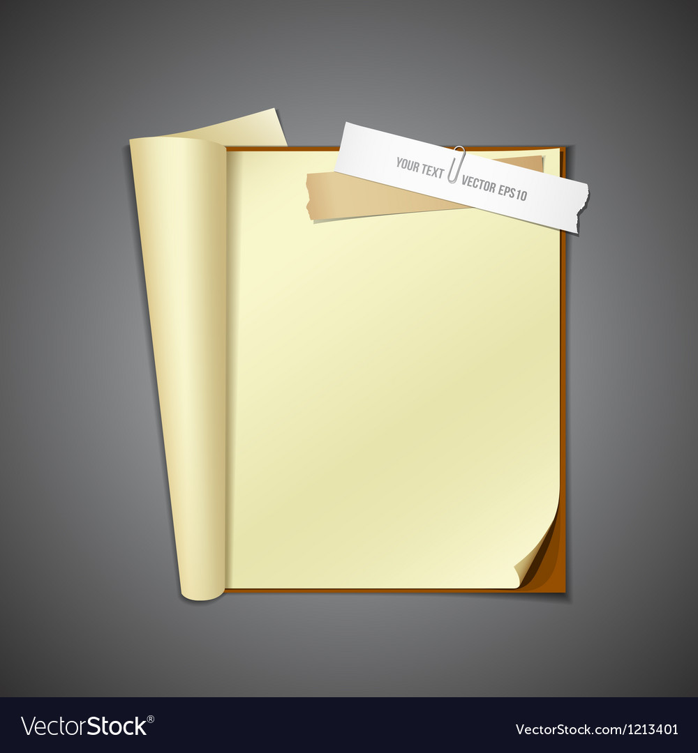 Open book and ripped paper vector