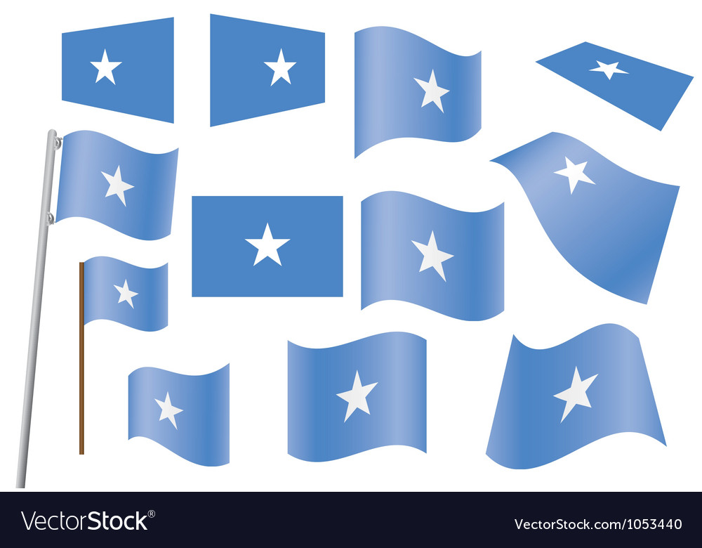 Flag of somalia vector
