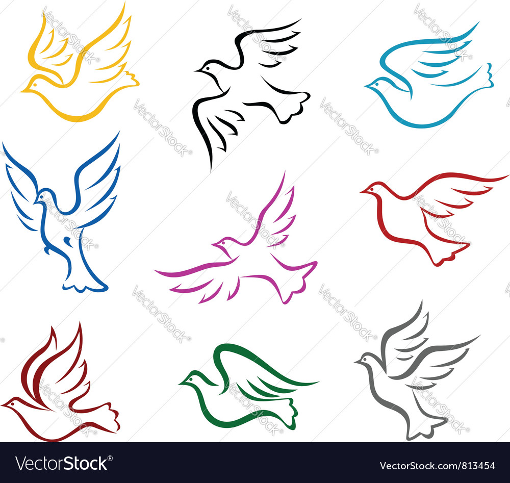 Pigeons and doves vector