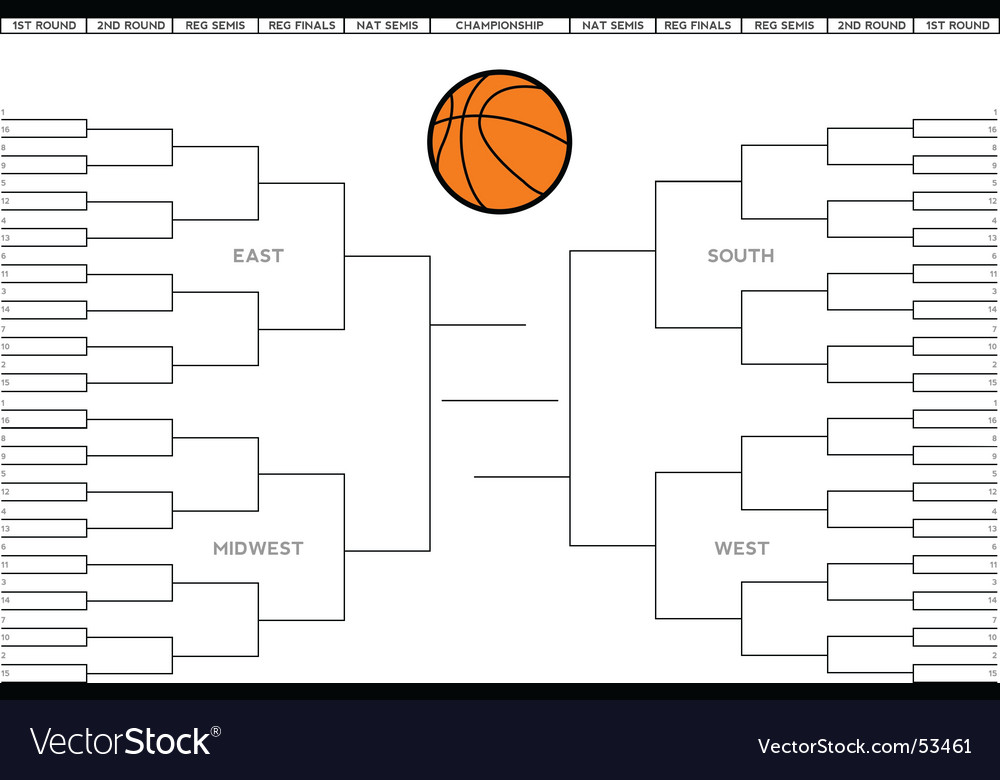 College basketball tournament bracket vector