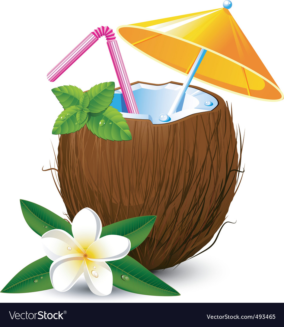 Coconut drink vector