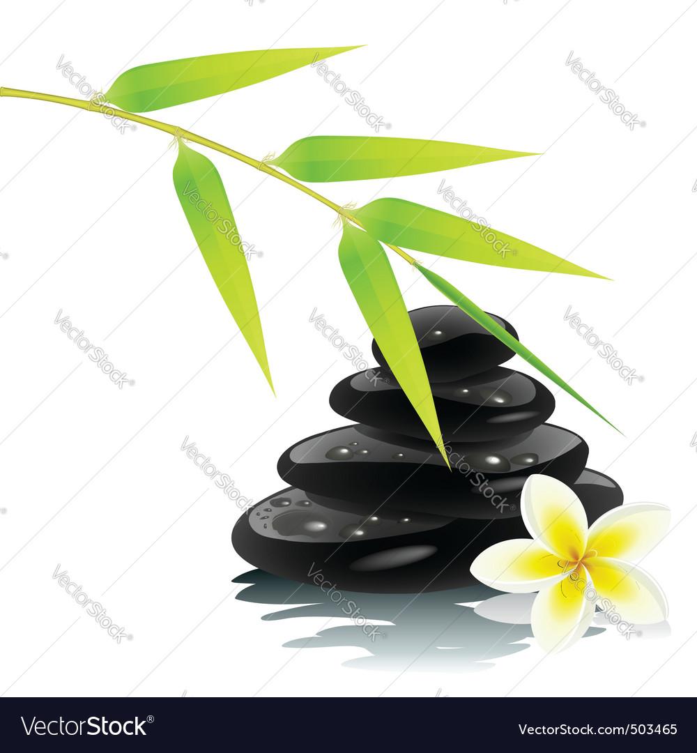 Zen ambiance vector
