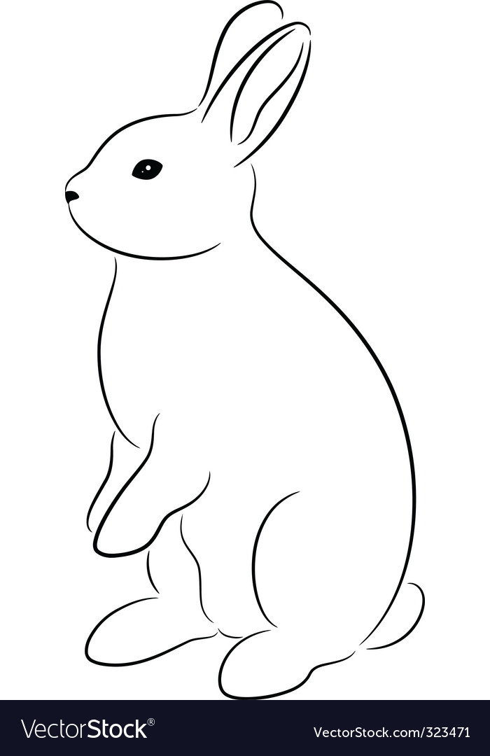 Rabbit Drawing Outline