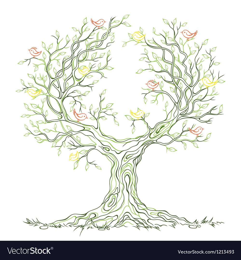 Graphic green branchy tree with birds vector