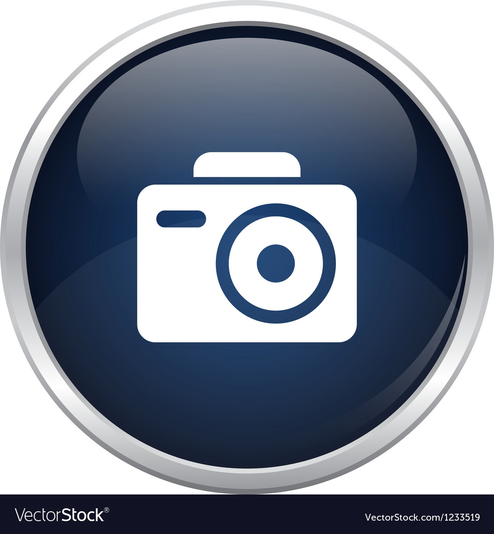 Blue photo icon vector