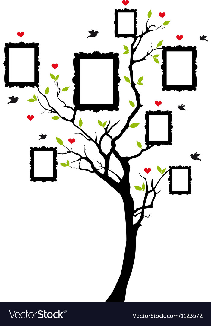 Family tree with picture frames vector