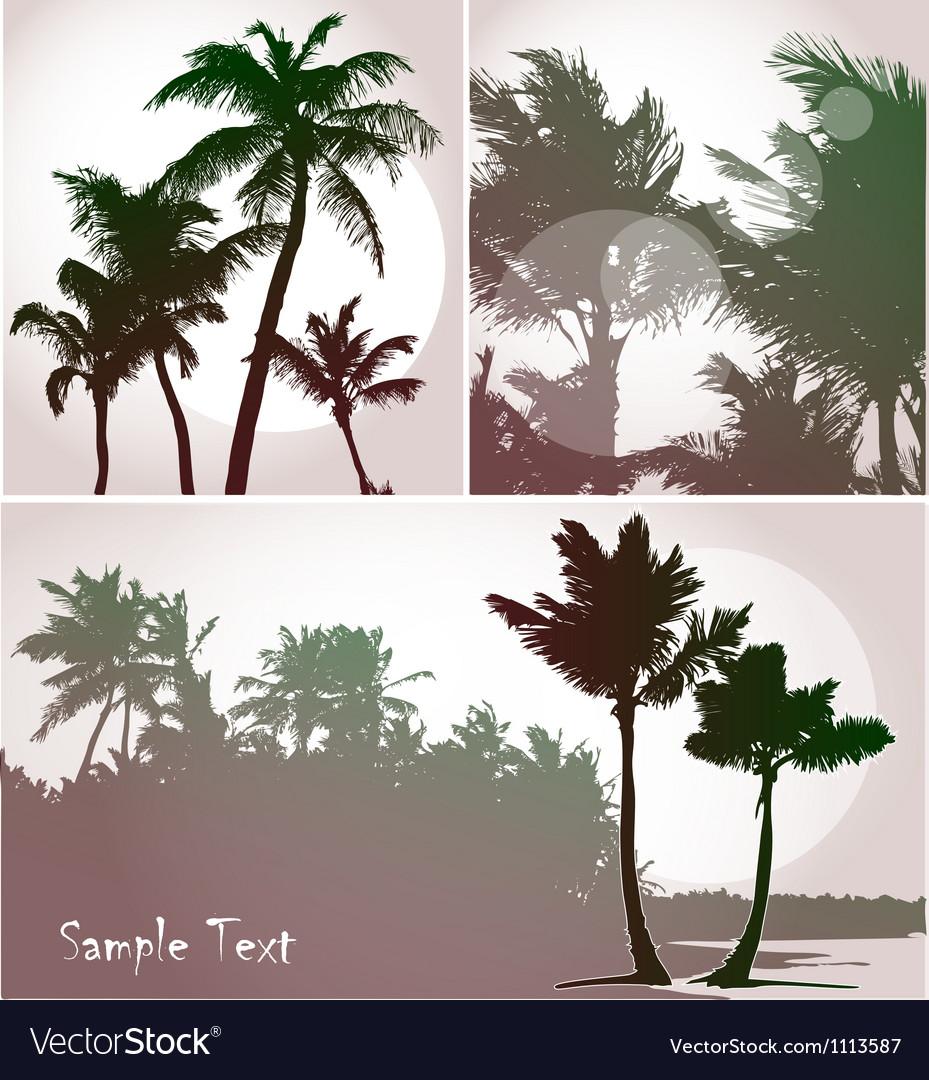 Palms vector