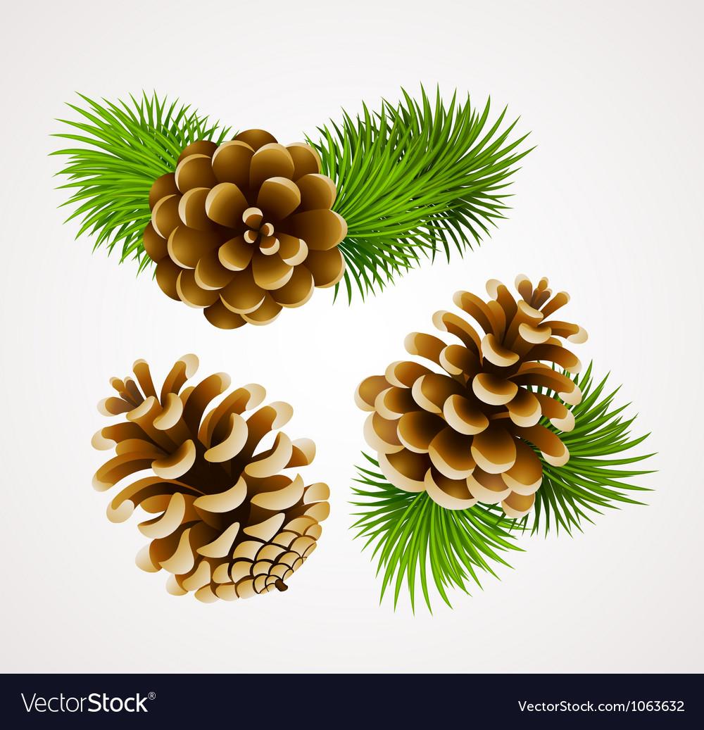 Cones vector