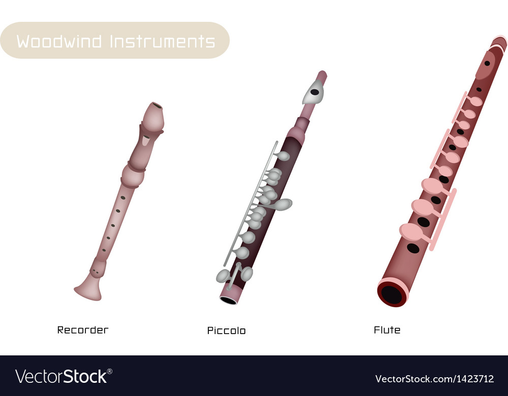 Three woodwind instrument vector