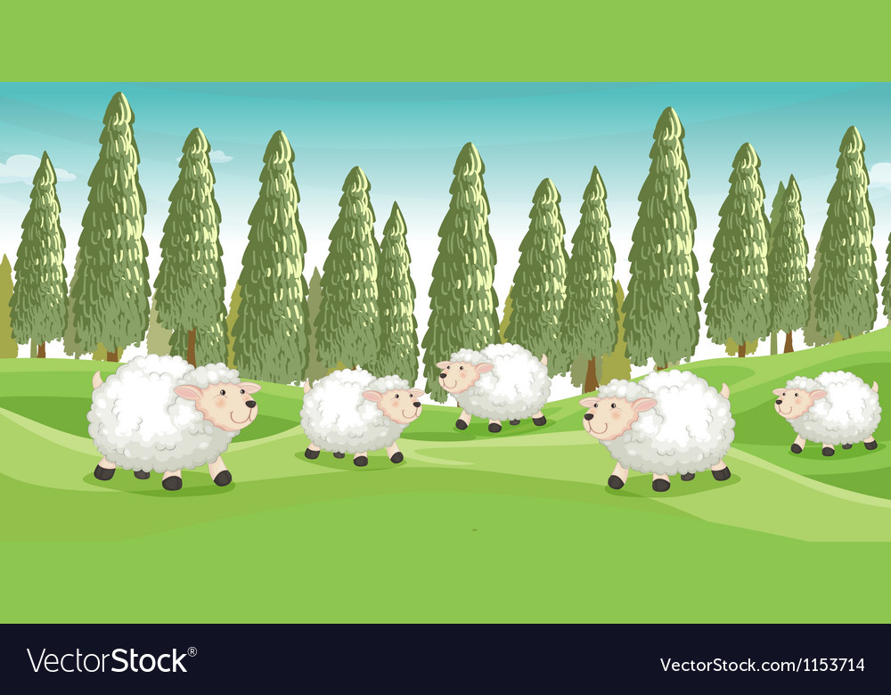 Smiling sheeps vector