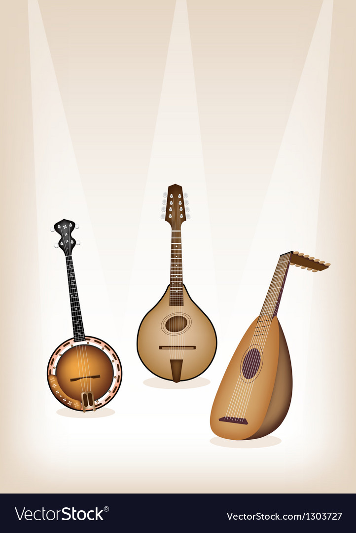 Musical instrument strings on brown stage vector