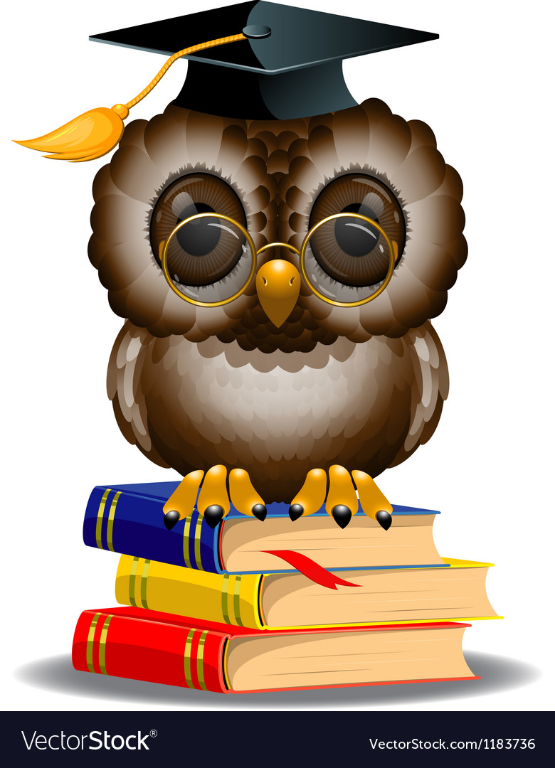Owl with graduation cap vector