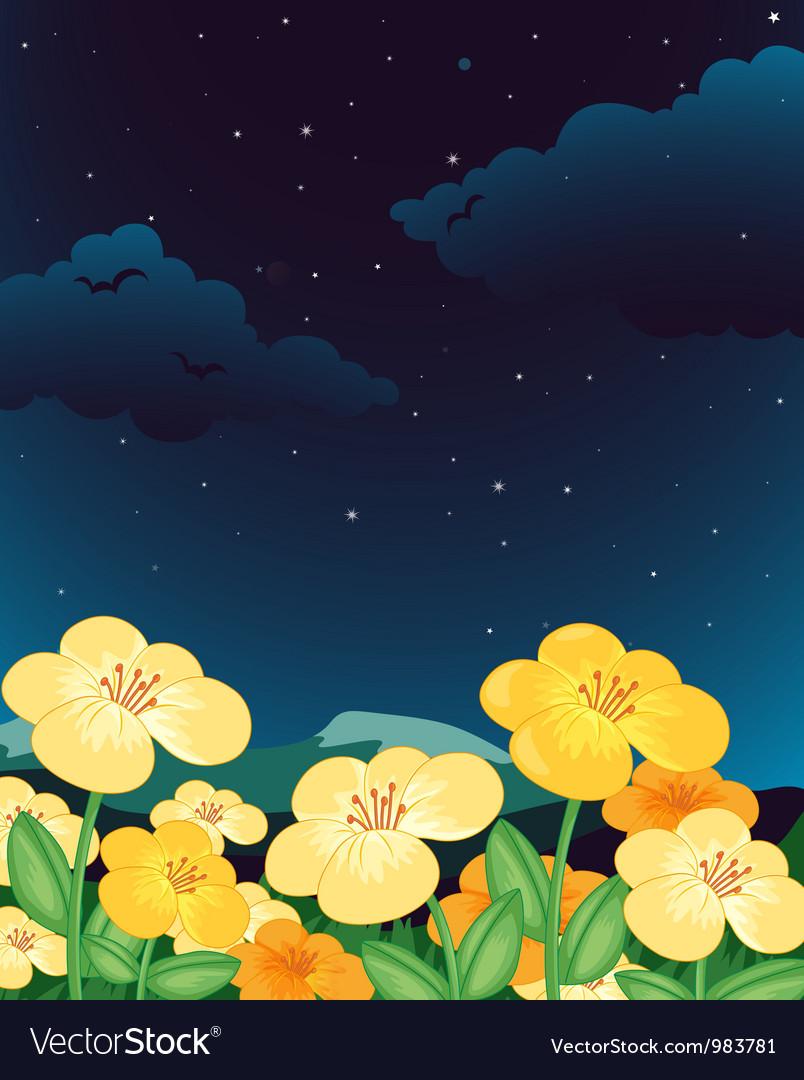 Evening floral fleid vector