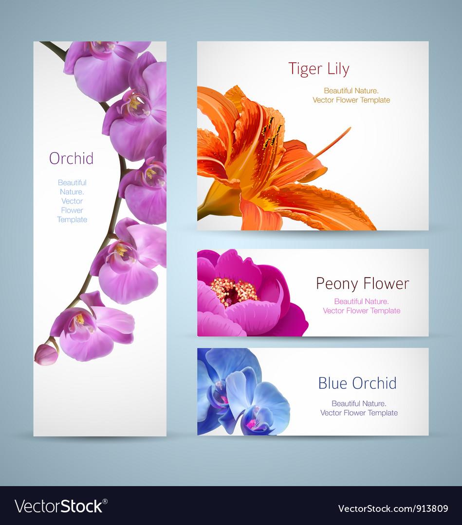 Flower templates vector