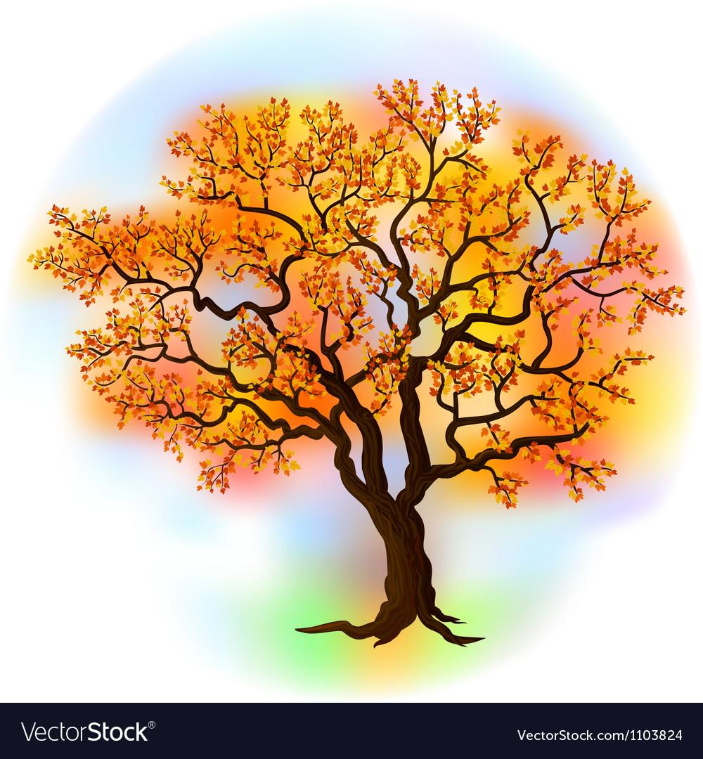 Beautiful autumn tree vector