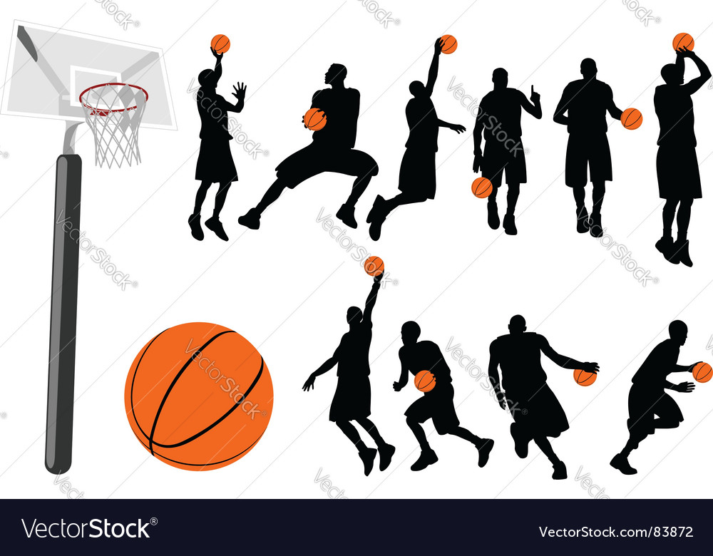 Basketball vector