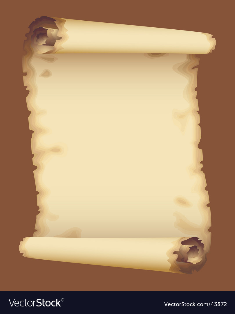 Old parchment vector