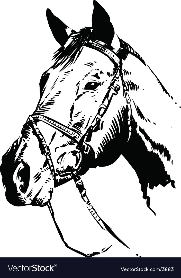 horse-vector-3883.jpg